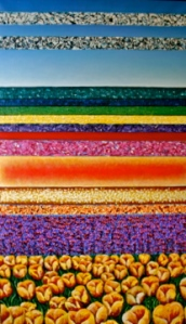 tulip fields (2.5'x3.5')